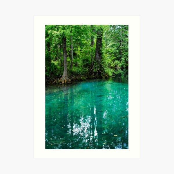 Silver Springs Florida Art Print
