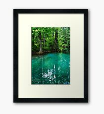 Silver Springs Florida Framed Print