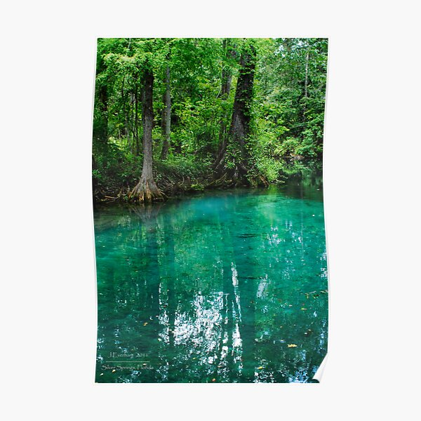 Silver Springs Florida Poster