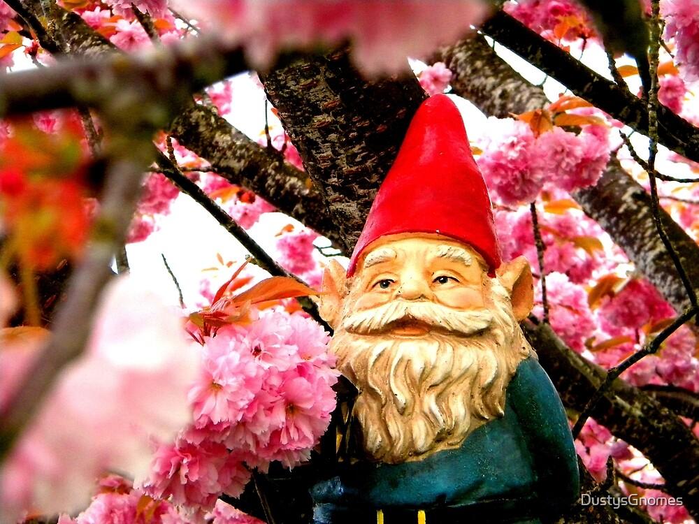 Sakura Bunches Gerome by DustysGnomes