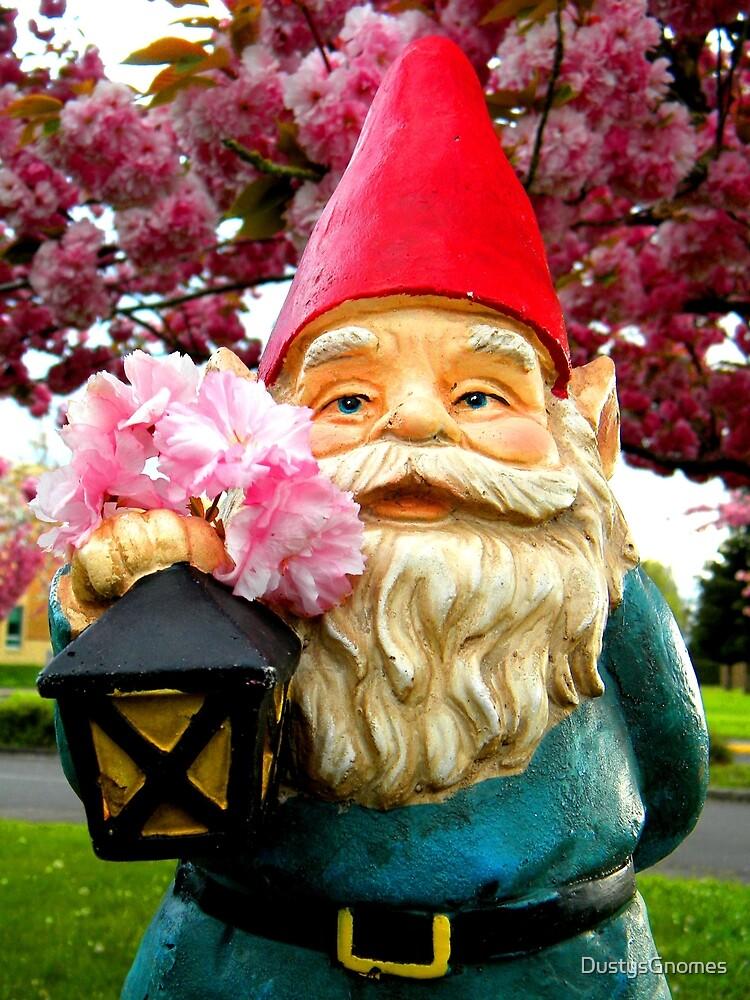 Pretty Gnome by DustysGnomes