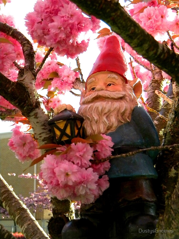 Pink Canopy Gnome by DustysGnomes