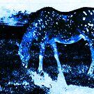 The Constellation Munge by Greg German