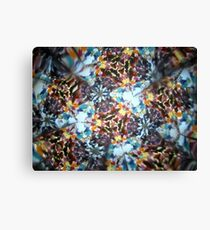 Kaleidescope 182 Canvas Print