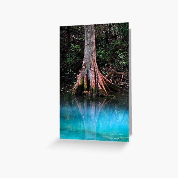 Reflective Beauty Greeting Card