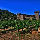 Castello Di Amorosa by flyfish70