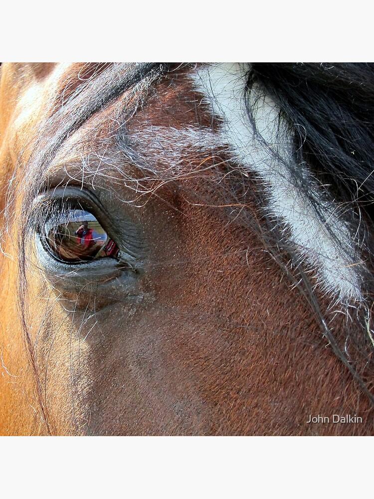 War Horse by JohnDalkin