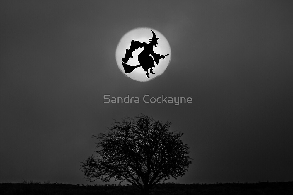 Cackling Witch In Moon by Sandra Cockayne