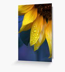 Sundrops Greeting Card