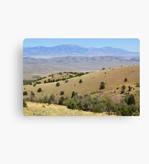 Spring Valley & Kern Mountains Canvas Print