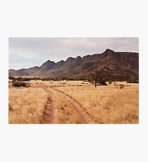 Wolwedans Road Photographic Print