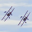 Wing Walkers by JacquiK