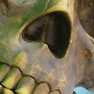Skull by Gregory L. Nance