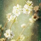 Spring's Enchantment by Linda Lees