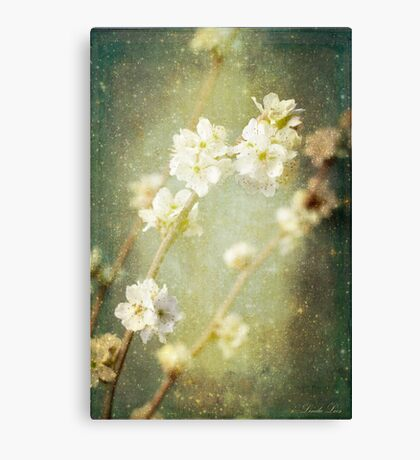 Spring's Enchantment Canvas Print