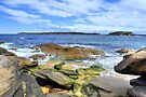 Botany Bay by Terry Everson