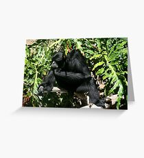 Ape Thinking - Adelaide Zoo - South Australia Greeting Card