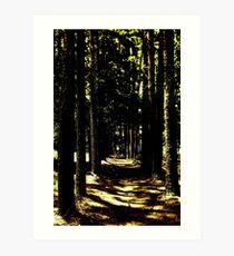 Unknown Path Art Print