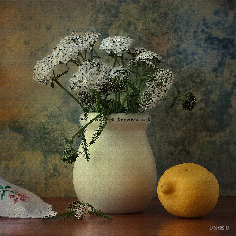 Still life with lemon by Þórdis B.