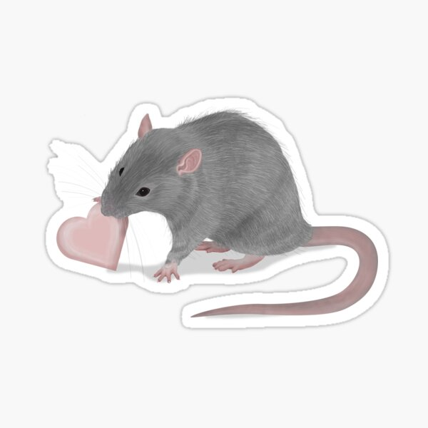 Theo the Rat with heart Sticker