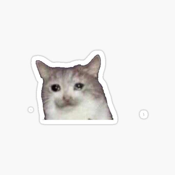Gato llorando Pegatina