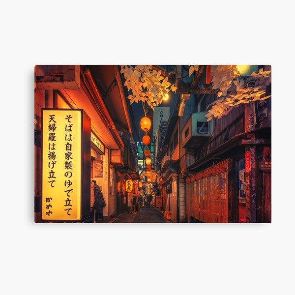 In the Alley II Canvas Print
