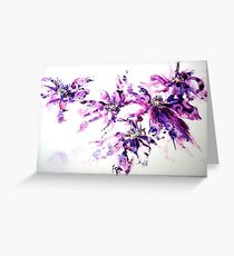 Wild-Clematis Greeting Card