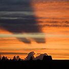 Tara sunset by Aleksandar Topalovic