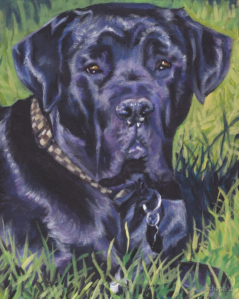 Cane Corso Fine Art Painting by lashepard
