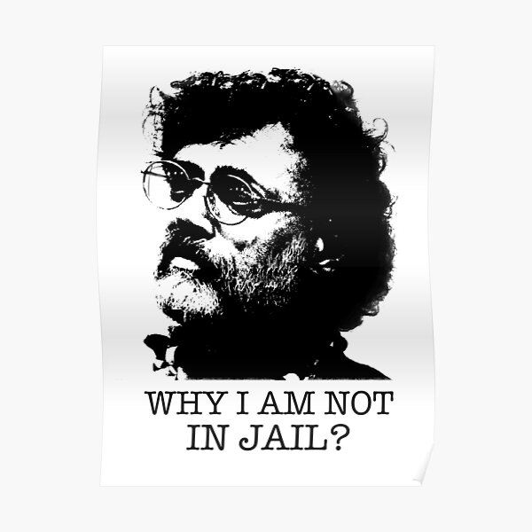Terence McKenna Poster