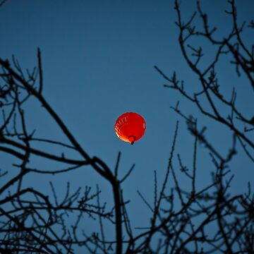 Red Balloon by Evolve