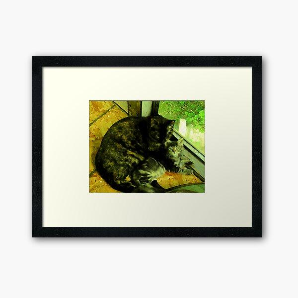 Cousin Opal cares for little Bandit Bear Framed Art Print