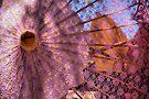 Purple Parasol by Bob Wall