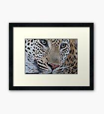 Leopard - Mxabene Male Framed Print