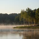 Lake, fog and trees by Antanas
