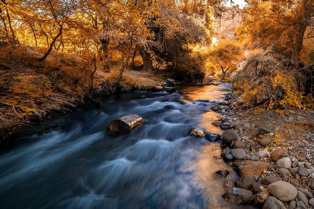 Autumn in Ihlara Valley by hayrettinsokmen