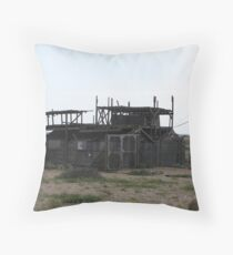 Just A Coat Of Paint? Throw Pillow