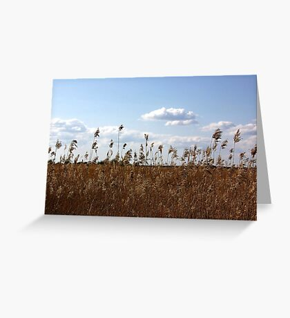 Reed Greeting Card