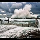The Curl Curl Explosion by JayDaley