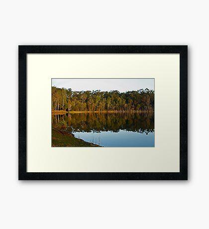 Reflections at Lake Samsonvale Framed Print