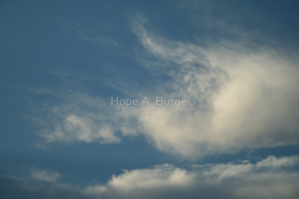 water droplets suspended in the atmosphere by Hope A. Burger