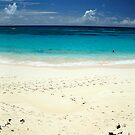 Surf Side Beach Panorama by John Gaffen