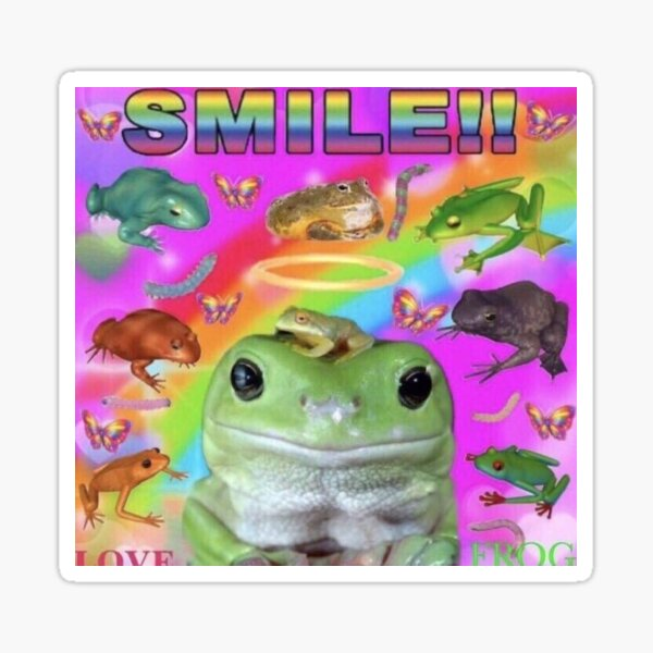 frog smile Sticker