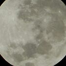 Supermoon close up . view large by supernan