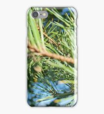 Pine or something, right? iPhone Case/Skin
