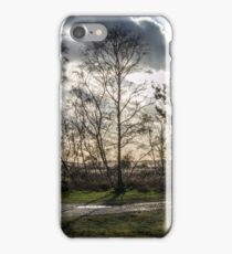Sparse Tree iPhone Case/Skin