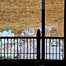 South South Bronx by ZoeMcduncan