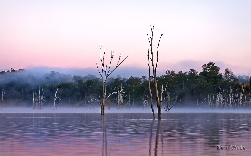 Misty Morning -Moogerah Dam by Beth  Wode