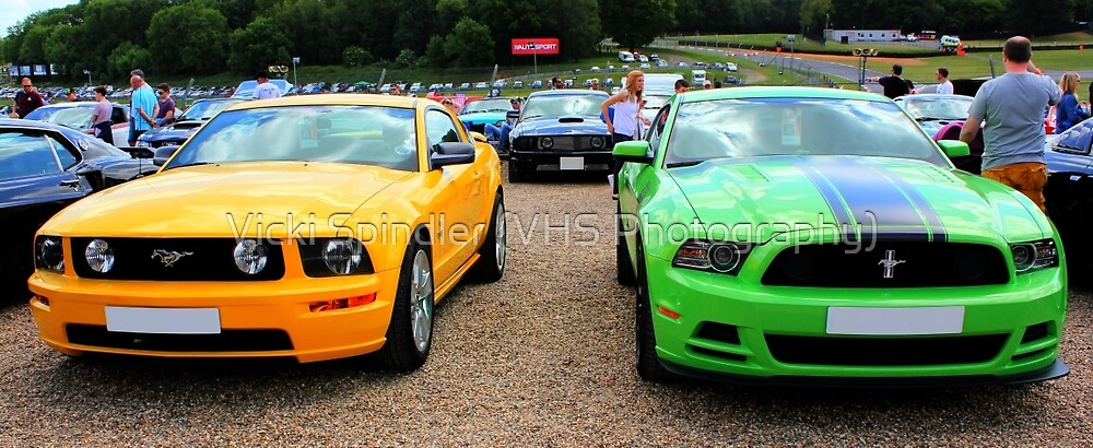 Yellow and Green Mustangs by Vicki Spindler (VHS Photography)