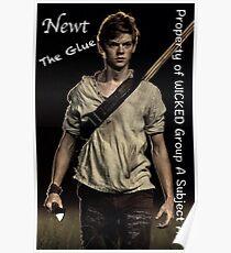 The Maze Runner - Newt  Poster